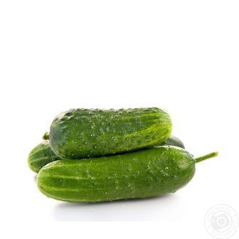 Огірок короткоплідний 1 кг