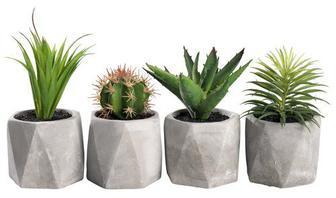 Рослини штучні TORGEIR асорт